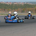 Foreign students mastering carting skills.